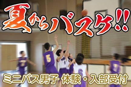 夏からバスケ ミニバス男子体験・入部受付
