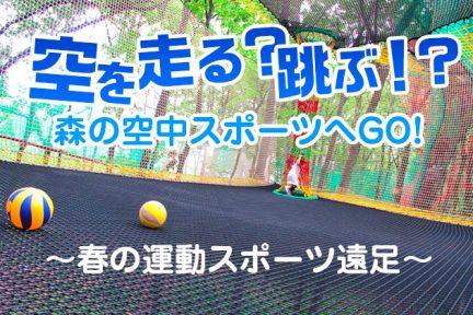 森の空中スポーツ2019